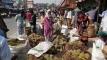 ইরি-বোরো ধানের চারা নিয়ে বিপাকে কৃষক
