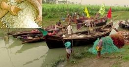 জাটকা আহরণ নিষিদ্ধকালীন মাসে ৪০ কেজি চাল পাবেন জেলেরা