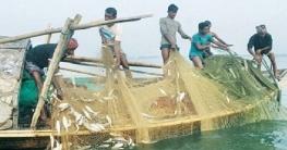 পদ্মা-মেঘনায় দু'মাস  সকল মাছ আহরণ নিষিদ্ধ